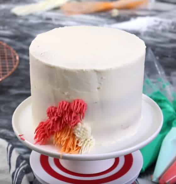 Shag Cake - Et encore