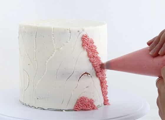 Shag cake repère de dessins