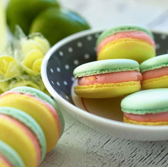 Macaron bicolore