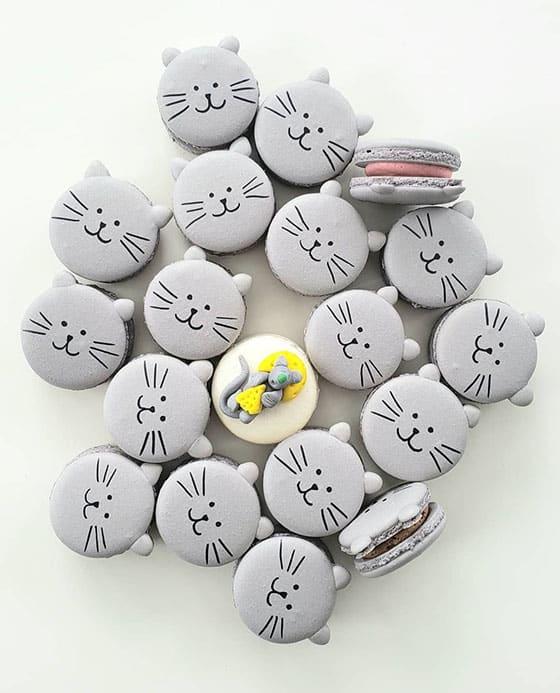 Macaron chat