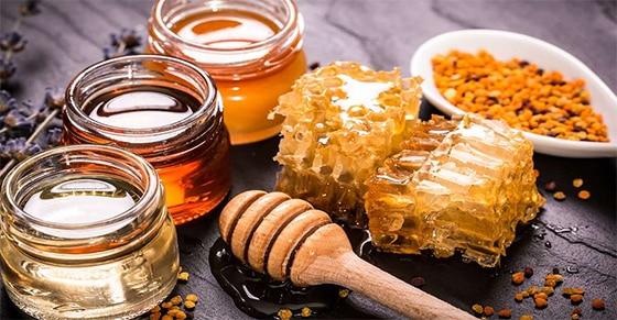 Pain d'épices - Quels miels ?